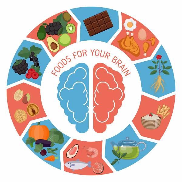 Useful foods to strengthen memory