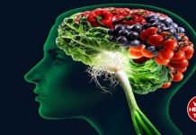 Useful foods to strengthen memory