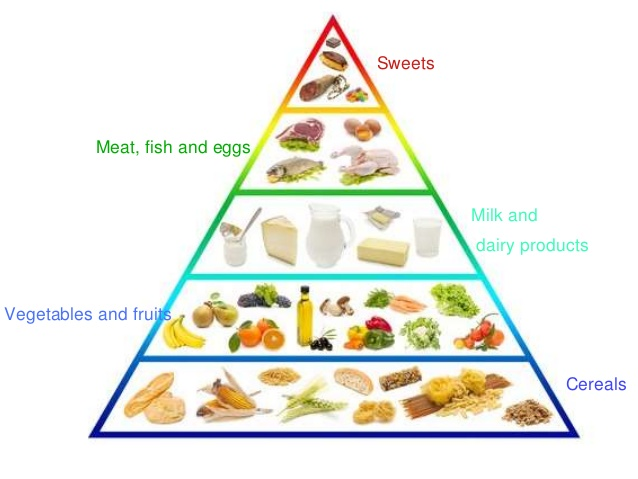 The food pyramid is a group of foods divided into several groups that characterized by their importance in building the body and helping it to control weight.